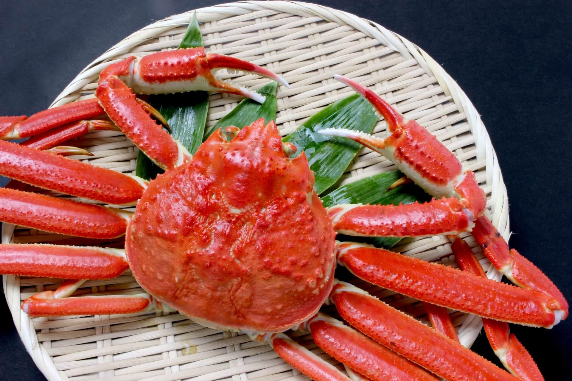 蟹のシーズン到来!! 11月19日は「輪島かにまつり」へGO !!